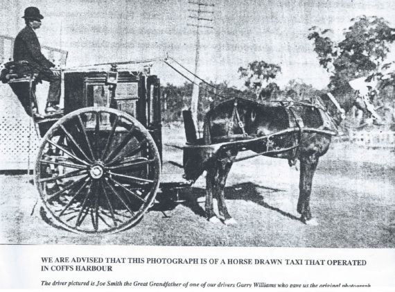 Horse and Cart Taxi in Coffs Harbour